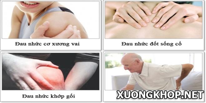 5 bài thuốc chữa đau xương khớp, đau lưng từ cây xấu hổ