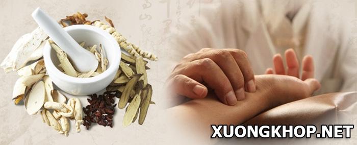 Chữa thoái hóa khớp theo y học cổ truyền bằng loại thuốc nào? 1