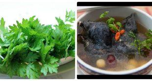Giới thiệu 2 món ăn từ ngải cứu ngon bổ giúp giảm đau xương khớp