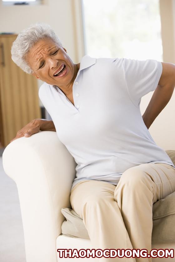 Giới thiệu tất cả các bài thuốc trị đau lưng hiệu quả từ dân gian đến đông y 1
