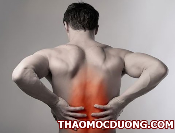 Tìm hiểu về bệnh vôi hóa cột sống lưng là gì phương pháp điều trị hiệu quả 1