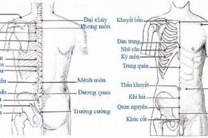 Để chữa đau lưng tức nên học cách ấn 3 huyệt đạo này trên cơ thể