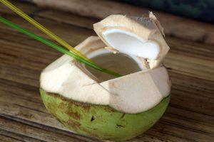 Trầu không, nước dừa- vị thuốc chữa trị bệnh gout hiệu quả