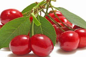 Ăn trái cherry có loại bỏ được bệnh gout không? Tại sao? 1