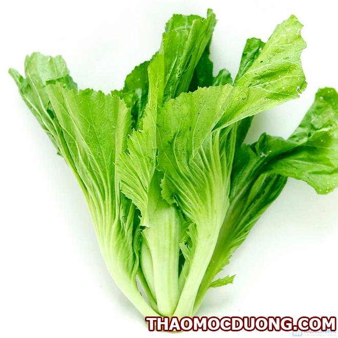 Chữa bệnh gout từ quả nhàu, nước cải bẹ xanh, lá sake, nấm lim xanh 4