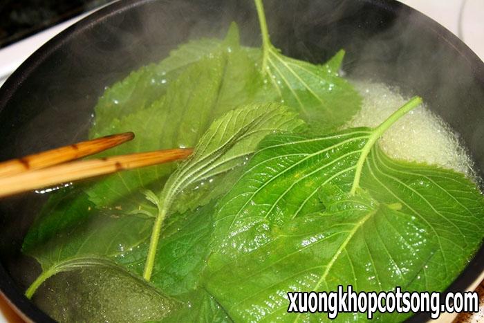 Phương pháp điều trị bệnh gout bằng lá rau tía tô, giảm đau nhanh như thuốc 1